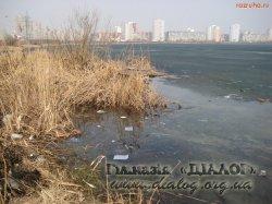 Проект: «Озеленення Києва»