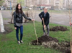 Озеленення Дарницького району