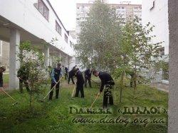 Озеленення та благоустрій гімназії