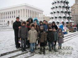 Новорічна ялинка - 2013