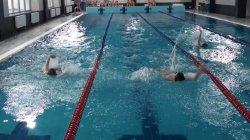 Змагання з плавання «Першість гімназії «Діалог»-2019»